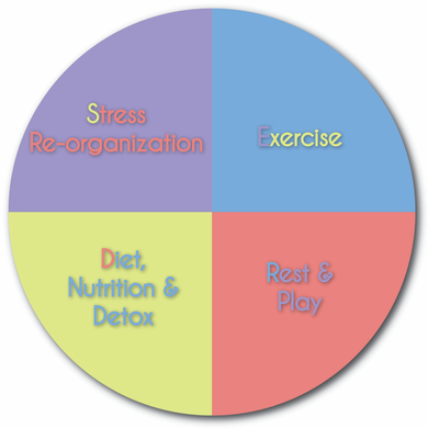 Stress Re-organization, Diet Nutrition Detox, Exercise, Rest & Play, Freedom, Colorado Health and Wellness Center, Dr. Rick Munn, Alternative Medicine, Holistic Chiropractic, Network Spinal Analysis, Network Chiropractor, Denver Chiropractor